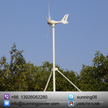 Eco-digno 12/24 Volts 300 Watts Vento Sistema Solar: 12V / 24V 300W Gerador de Turbina Eólica