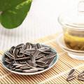 Wholesale preço de mercado de sementes de girassol
