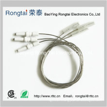 Ignition Electrodes/Ignition Needle for Gas Cooker/Gas Oven
