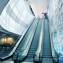 Escalator pour les métros et aéroports (VVVF Drive) 30/35 Degree