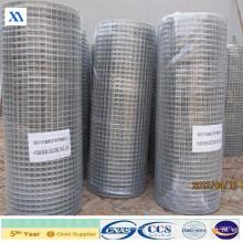 Malla de pajarera de malla de alambre soldada (XA-WWM57)