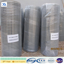 Welded Wire Mesh Aviary Mesh (XA-WWM57)