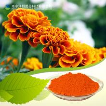 Extracto de flor de luteína / caléndula