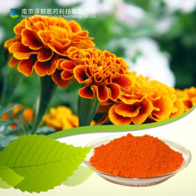 Lutein / Marigold Flower Extract