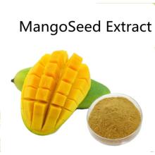 Kaufen Sie online Mangosamenextrakt-Pulver für Lebensmittel