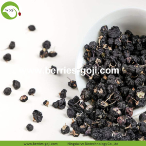 Factory Bulk Natural Nutrition Black Wolfberry