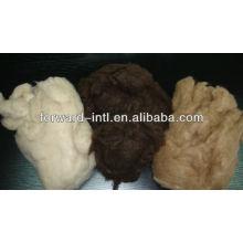 dehaired yak hair