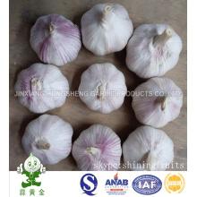 Fresh New Crop Normal White Garlic Size 5.0cm