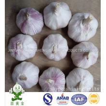 Свежий новый урожай Нормальный белый чеснок Размер 5.0cm