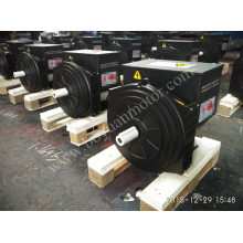 Generador síncrono Brushless de la CA 184h 30kw