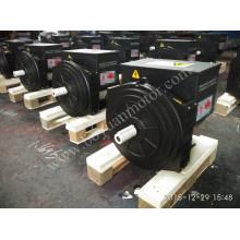 AC Brushless Synchronous Generator 184h 30kw