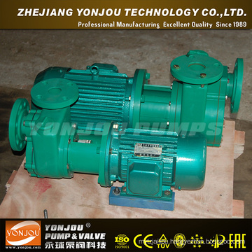 Circulating Pump (FPZ)