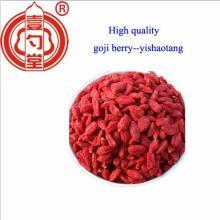 750 size Ningxia Organic goji berry fruit