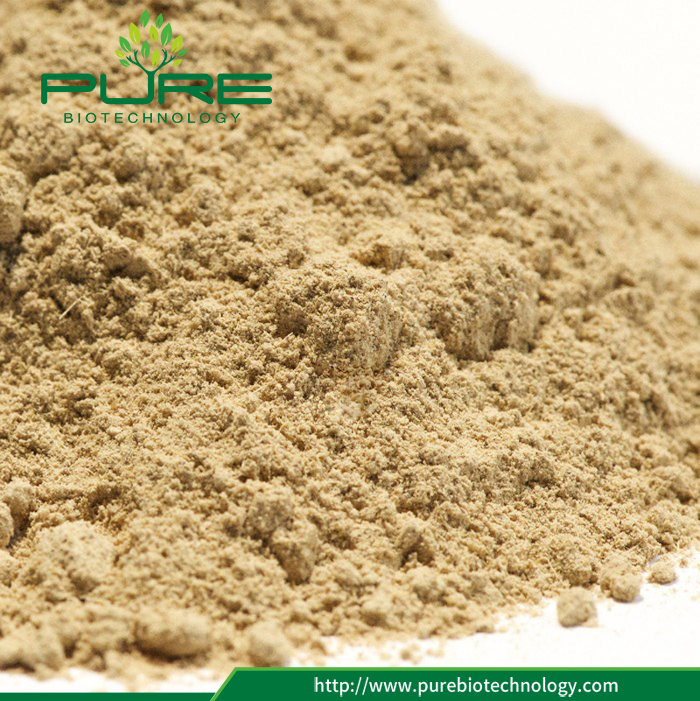 Licorice Root Extract Glycyrrhiza Liquiritigenin (3)
