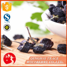 Factory sale various black organic medlar