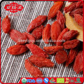 whole foods goji berry wholesaler