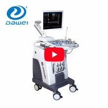 DW-C80 medical device 3 probes trolley color doppler ultrasound machine price