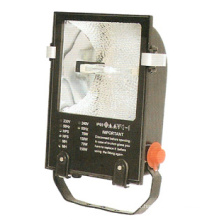 Floodlight Fixture (DS-309B)
