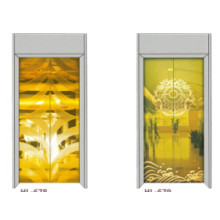 Fjzy-Elevator (FJ8000-1) Elevator Passenger Fjzy-215
