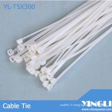 Attache de câble en nylon approuvée par Rohs (YL-T5X300)