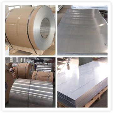 Aluminum Sheet and Coil 5086 Price