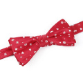 Wholesale Custom New Design Self Bow Ties Men