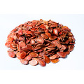 Low Price Xinjiang Melon Seeds