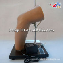 ISO Deluxe Elbow Intra-artikuläre Injektion Training Modell, Ellenbogen-Injektion Modell