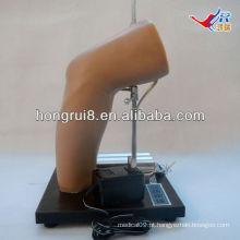 Modelo de treinamento de injeção intra-articular do cotovelo Deluxe Deluxe, modelo de injeção do cotovelo