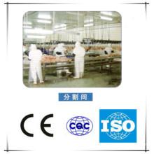 Huhn Schlachten Produktionslinie Maschinen
