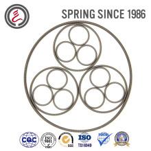 Auto Parts Elestic Element Oil Seal Spring