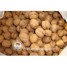 Лучшее качество китайская цена грецкие орехи