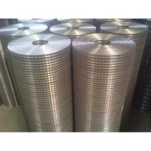 Stainless Steel Welded Wire Mesh Sheets