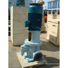 Hot Sell 3gcl Head of Screw Pump