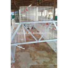 Jaula de capa de pollo de 3 niveles 120 aves Capacidad para aves de corral en Dubai