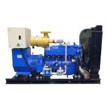 Pequeño generador de gas natural de 10kw para el hogar