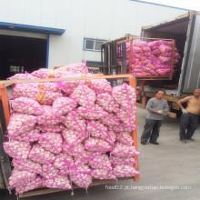 2016 Shandong alho fresco com melhor qualidade venda quente