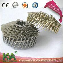 Galvanisierte Paletten-Nägel für das Überdachung, Fechten