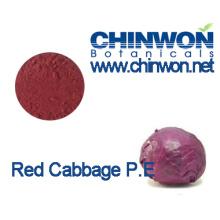 Corantes naturais Extrato de repolho vermelho Repolho Pó vermelho