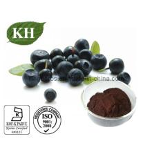 Polifenóis 10%, 40%; Proantocianidinas 40%, 60%; Flavones10% extrato de Açaí