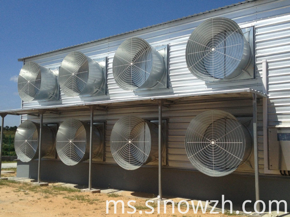 Metal Structure Poultry