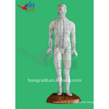 HR-505 Mensch Akupunktur Punkt Modell 46CM, Akupunktur und Modell