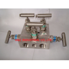 Manifold Valve with 5 Way
