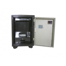 elektronische Fire Safes