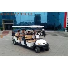Дешевые 11 пассажиров Электрический Гольф Багги для продажи
