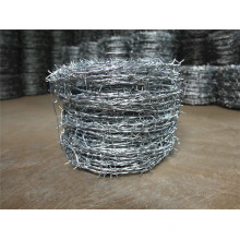 Galvanzied Barbed Wire for Sale