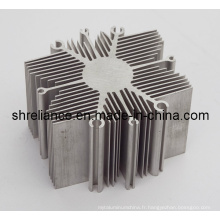 Aluminium / Alliage d'aluminium Extrudé Industrial Heat Sinks