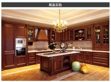 Good Good Design Shaker Style Kitchen Cabinets with Acrylic Kitchen Cabinet