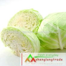2012 Nouveau chou frais de légumes chinois