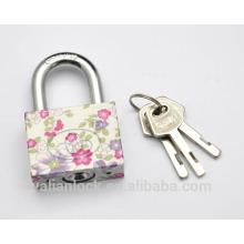 Flor pintada galvanoplastia pequena bonito quadrado tipo paleta chave impressão padrão ferro cadeado